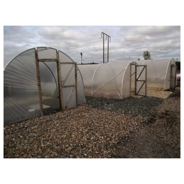 Polytunnels/Soil